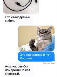 Мессенджер для смартфона